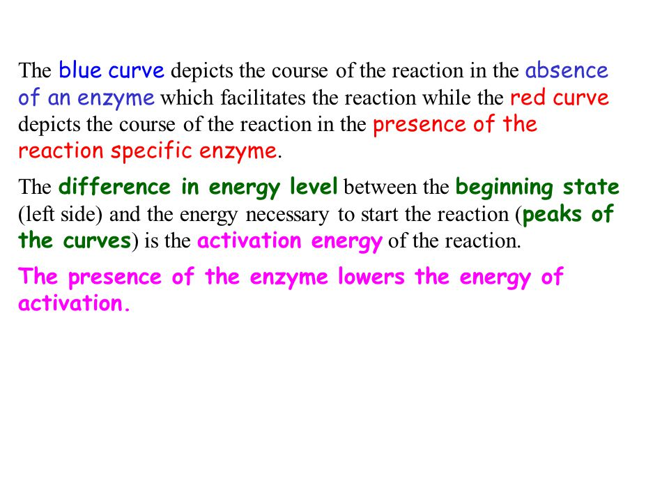 The blue curve depicts the course of the reaction in the absence of an enzyme which facilitates the reaction while the red curve depicts the course of the reaction in the presence of the reaction specific enzyme.