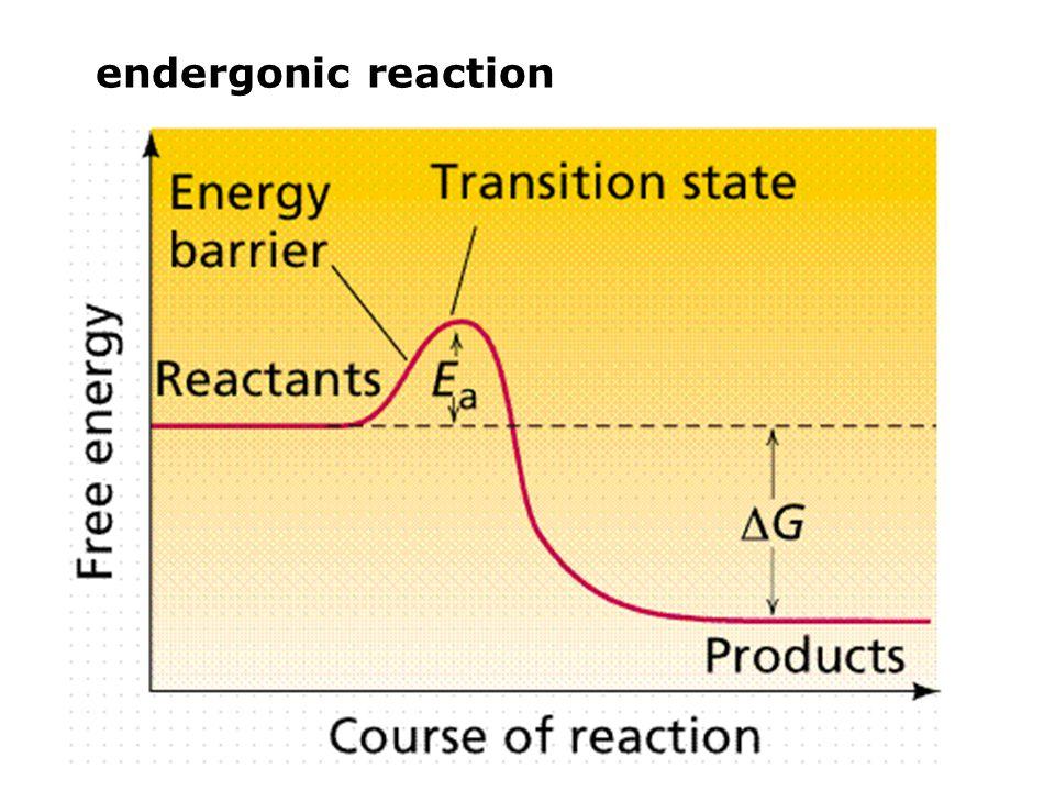 endergonic reaction
