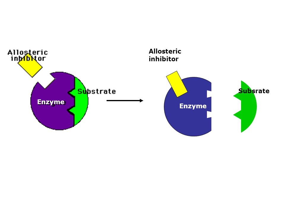 Enzyme Subsrate Allosteric inhibitor Enzyme