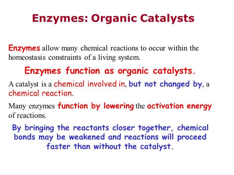 Enzymes: Organic Catalysts Enzymes allow many chemical reactions to occur within the homeostasis constraints of a living system.