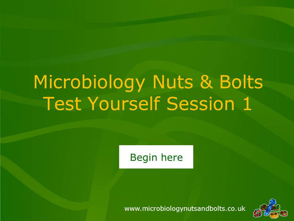 www.microbiologynutsandbolts.co.uk Microbiology Nuts & Bolts Test Yourself Session 1 Begin here