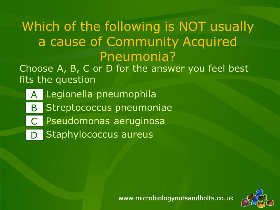 www.microbiologynutsandbolts.co.uk Which of the following is NOT usually a cause of Community Acquired Pneumonia.
