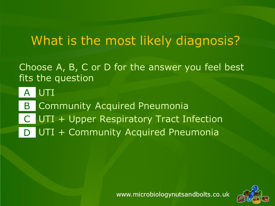 www.microbiologynutsandbolts.co.uk What is the most likely diagnosis.