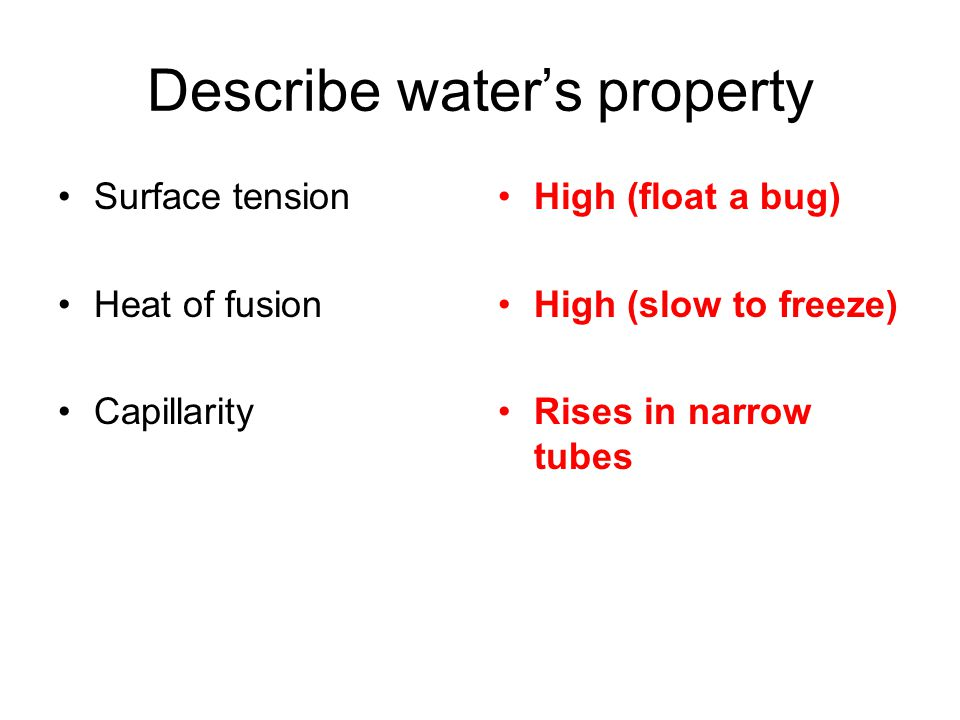 Describe water's property Surface tension Heat of fusion Capillarity High (float a bug) High (slow to freeze) Rises in narrow tubes