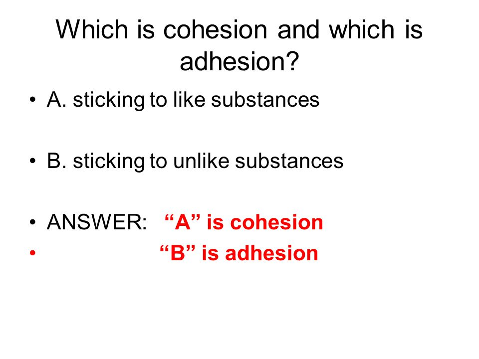 Which is cohesion and which is adhesion. A. sticking to like substances B.
