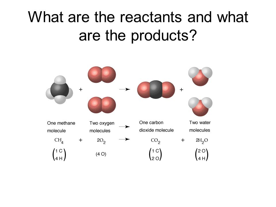 What are the reactants and what are the products