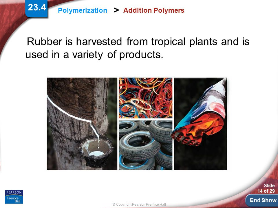 End Show Slide 14 of 29 © Copyright Pearson Prentice Hall Polymerization > Addition Polymers Rubber is harvested from tropical plants and is used in a