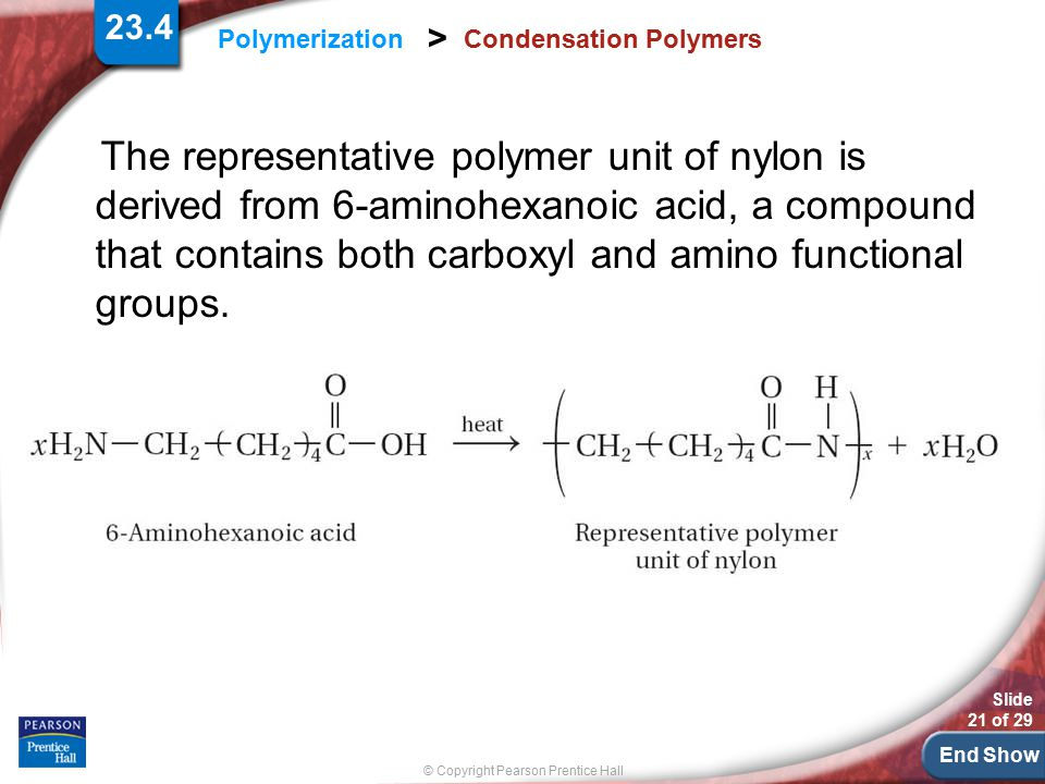 End Show Slide 21 of 29 © Copyright Pearson Prentice Hall Polymerization > Condensation Polymers The representative polymer unit of nylon is derived f