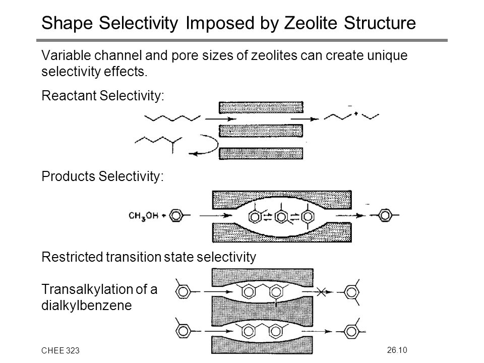 CHEE 32326.10 Shape Selectivity Imposed by Zeolite Structure Variable channel and pore sizes of zeolites can create unique selectivity effects.