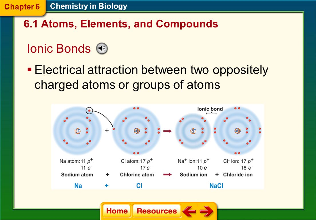 Chemical Bonds Chemistry in Biology  Covalent bonds  Chemical bond that forms when electrons are shared  A molecule is a compound in which the atom