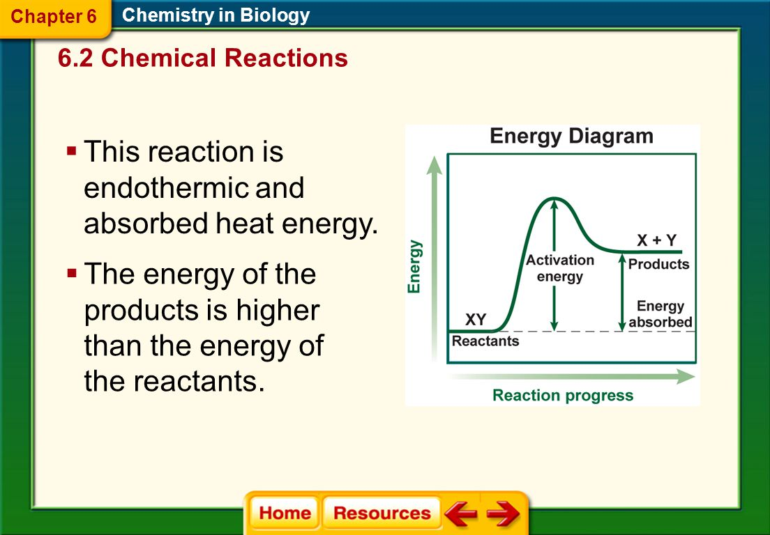 Chemistry in Biology  This reaction is exothermic and released heat energy.  The energy of the product is lower than the energy of the reactants. 6.