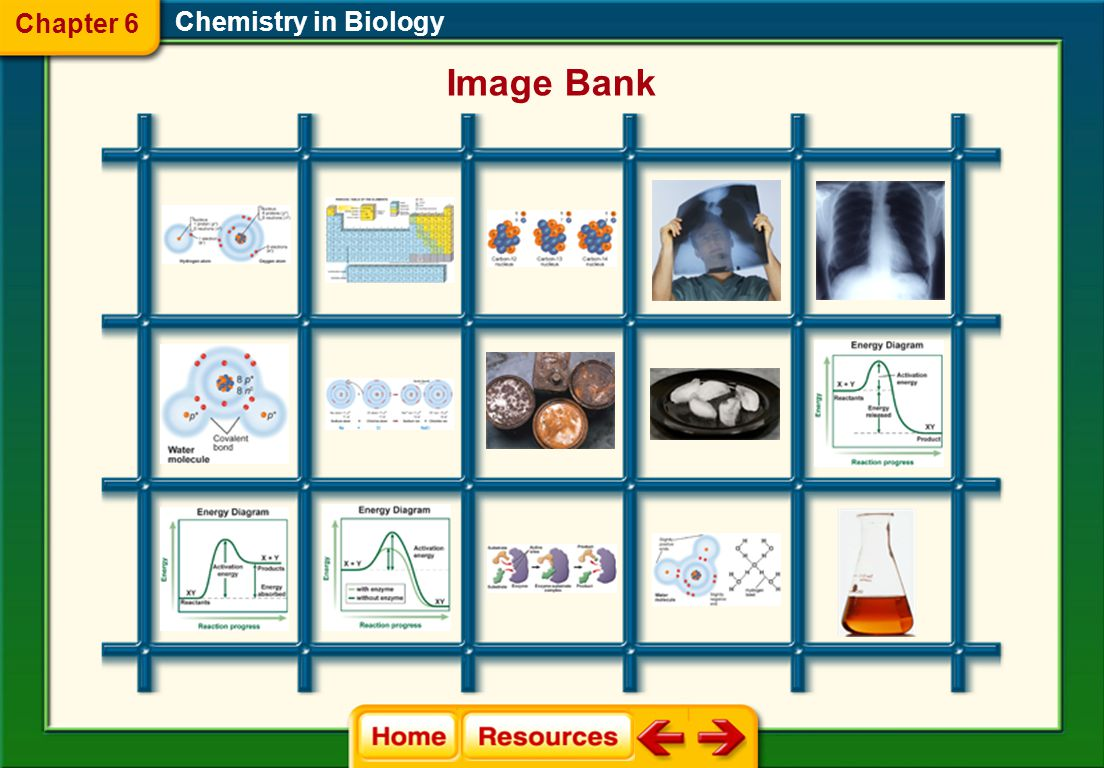 Chemistry in Biology Glencoe Biology Transparencies Chapter 6