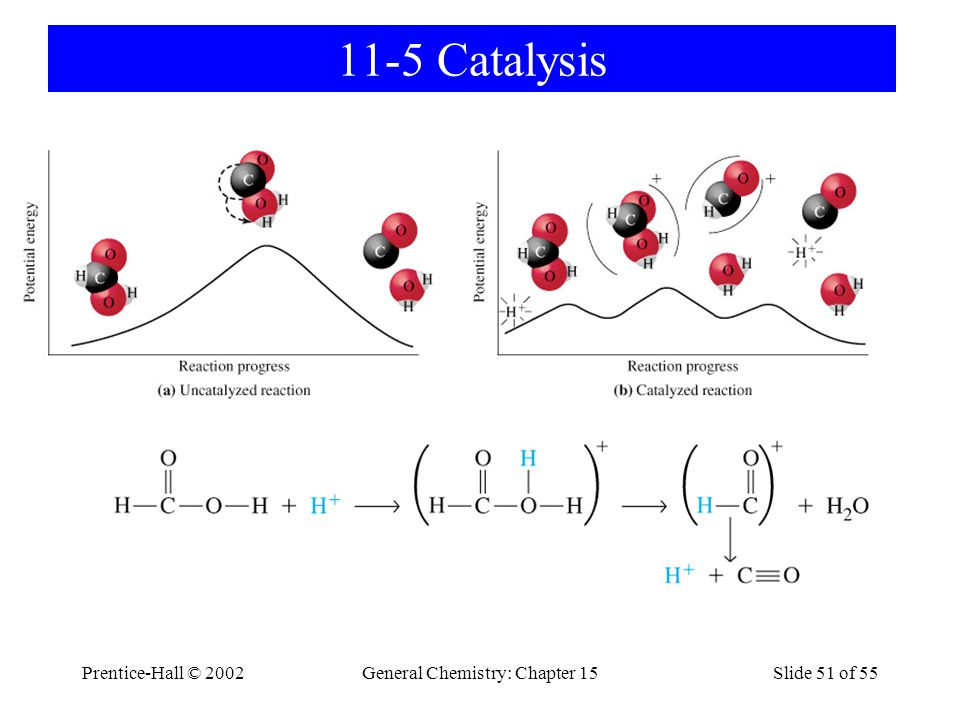 Prentice-Hall © 2002General Chemistry: Chapter 15Slide 51 of 55 11-5 Catalysis