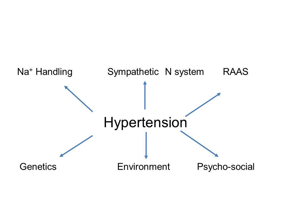 Hypertension Na + Handling Sympathetic N system RAAS Genetics Environment Psycho-social