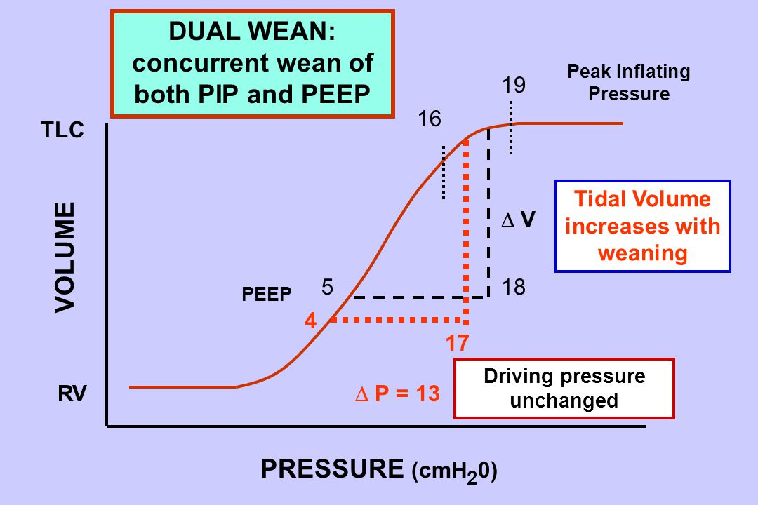 5 17 18 TLC RV 19 16  P = 13  V V PRESSURE (cmH 2 0) VOLUME Peak Inflating Pressure PEEP 4 DUAL WEAN: concurrent wean of both PIP and PEEP Tidal Volume increases with weaning Driving pressure unchanged
