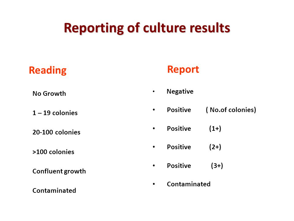 Reporting of culture results Reading No Growth 1 – 19 colonies 20-100 colonies >100 colonies Confluent growth Contaminated Report Negative Positive (