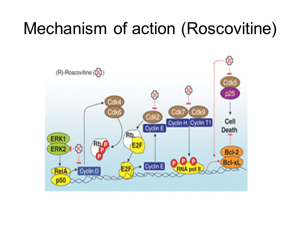 Mechanism of action (Roscovitine)