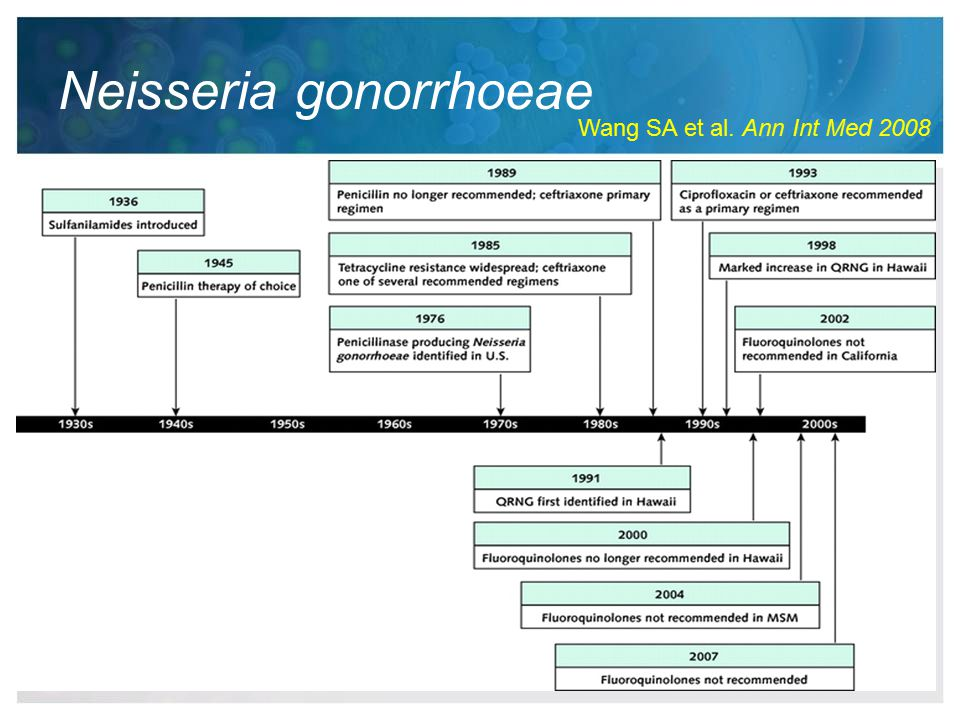 Neisseria gonorrhoeae Wang SA et al. Ann Int Med 2008