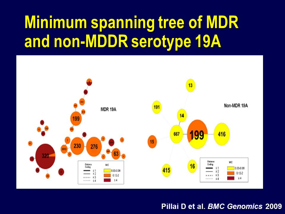Minimum spanning tree of MDR and non-MDDR serotype 19A Pillai D et al. BMC Genomics 2009