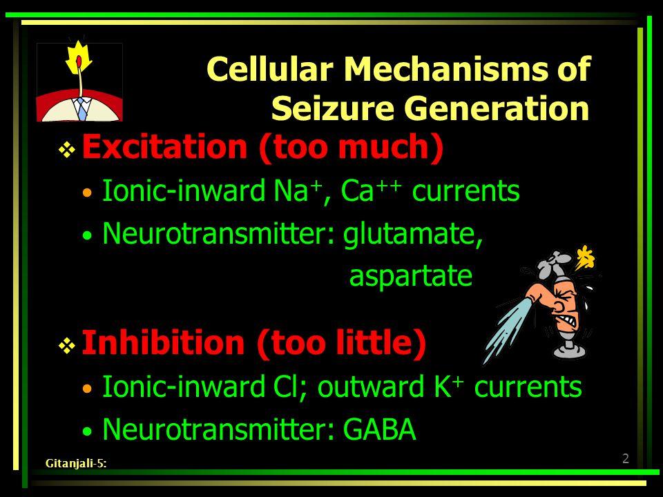 2 Cellular Mechanisms of Seizure Generation  Excitation (too much) Ionic-inward Na +, Ca ++ currents Neurotransmitter: glutamate, aspartate  Inhibition (too little) Ionic-inward Cl; outward K + currents Neurotransmitter: GABA Gitanjali-5: