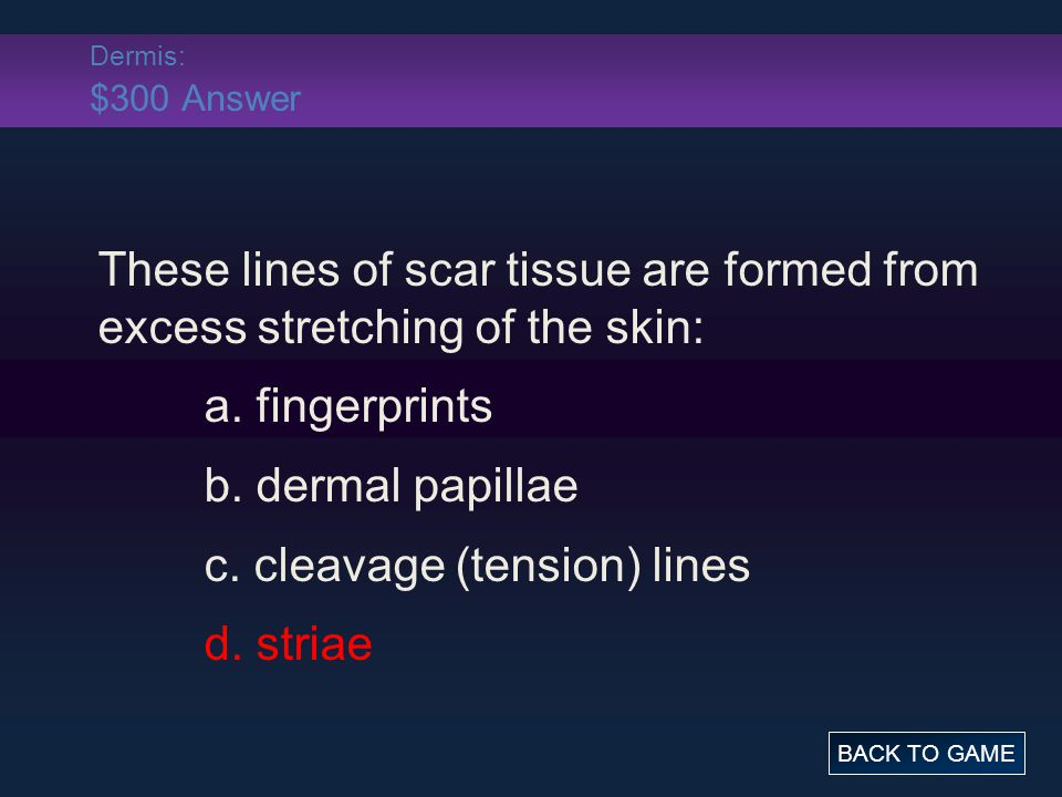 Dermis: $300 Answer These lines of scar tissue are formed from excess stretching of the skin: a. fingerprints b. dermal papillae c. cleavage (tension)