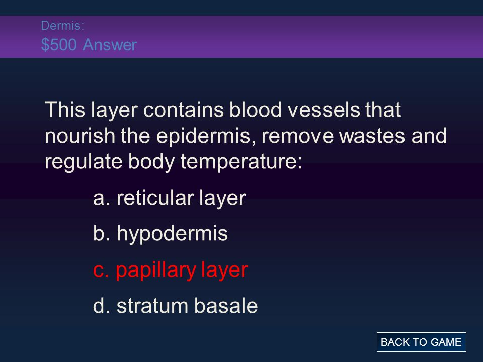 Dermis: $500 Answer This layer contains blood vessels that nourish the epidermis, remove wastes and regulate body temperature: a. reticular layer b. h