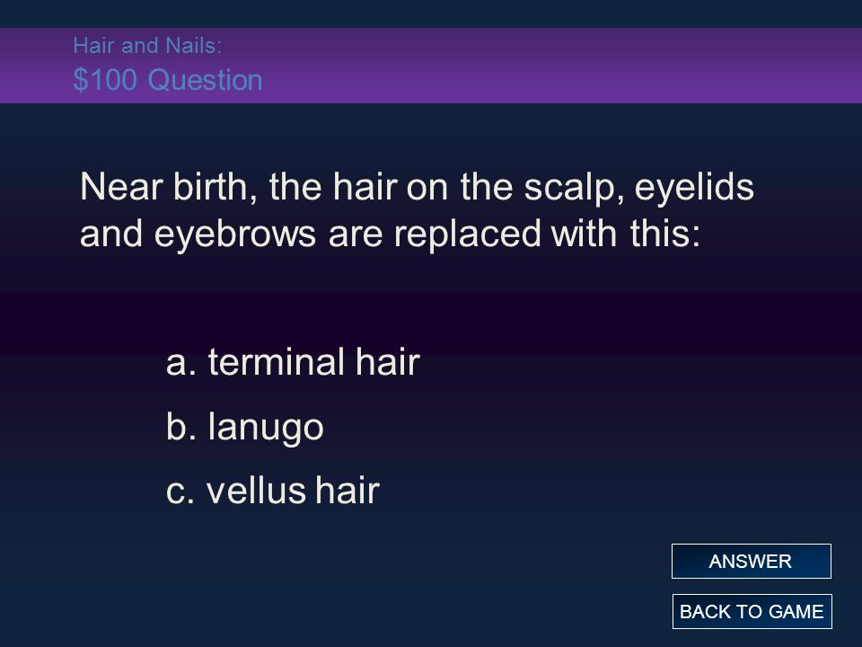 Hair and Nails: $100 Question Near birth, the hair on the scalp, eyelids and eyebrows are replaced with this: a. terminal hair b. lanugo c. vellus hai
