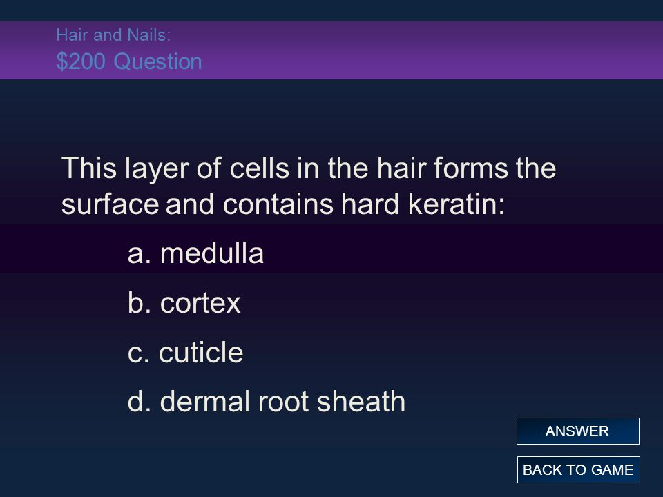Hair and Nails: $200 Question This layer of cells in the hair forms the surface and contains hard keratin: a. medulla b. cortex c. cuticle d. dermal r
