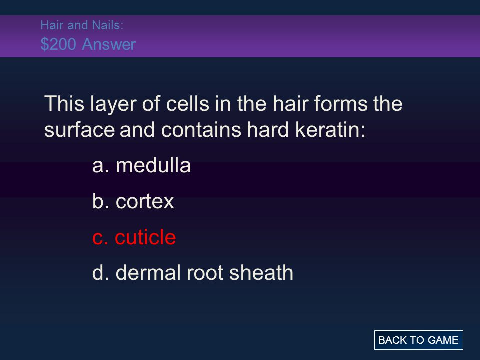Hair and Nails: $200 Answer This layer of cells in the hair forms the surface and contains hard keratin: a. medulla b. cortex c. cuticle d. dermal roo