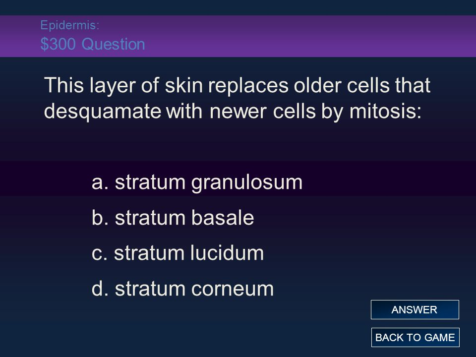 Grab Bag: $300 Answer This substance is synthesized in the skin and increases blood calcium for normal nerve and muscle function: a.