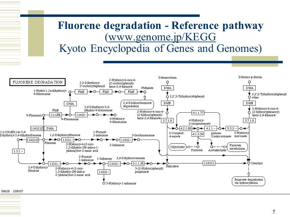 5 Fluorene degradation - Reference pathway (www.genome.jp/KEGG Kyoto Encyclopedia of Genes and Genomes)www.genome.jp/KEGG