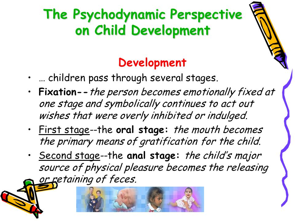 The Psychodynamic Perspective on Child Development Development cont'd Third stage--the phallic stage: the period in which the child experiences sensual pleasure through handling his or her genitals.