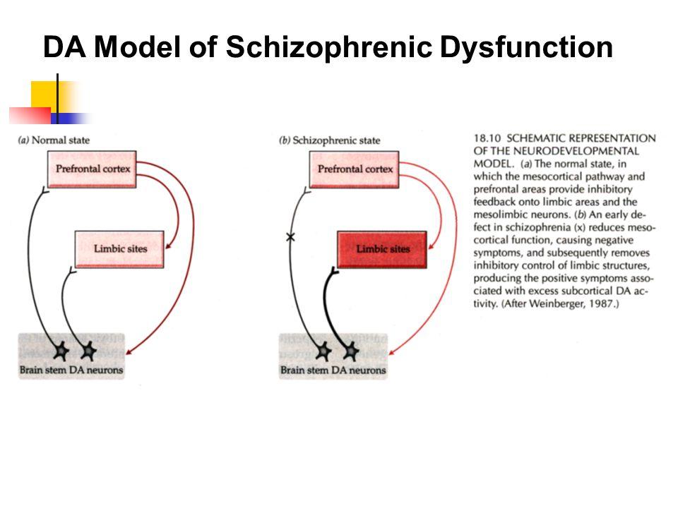 DA Model of Schizophrenic Dysfunction