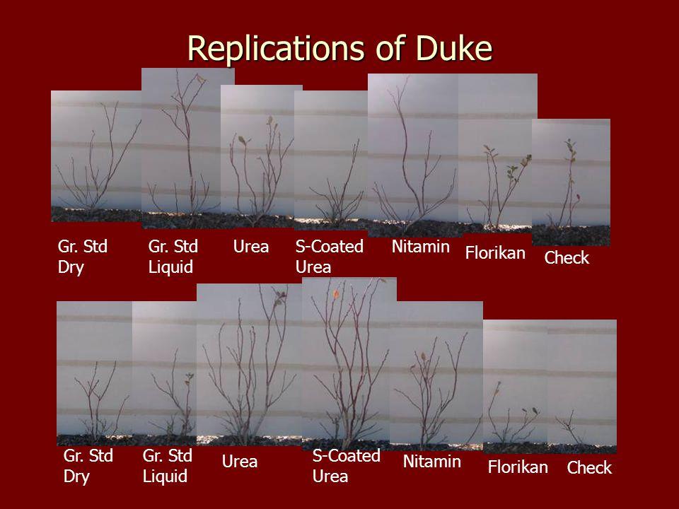 Replications of Duke Gr. Std Dry Gr. Std Liquid UreaS-Coated Urea Nitamin Florikan Check Gr.