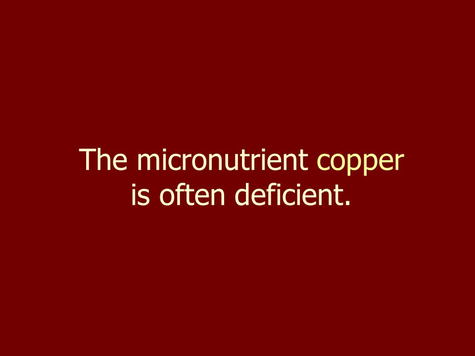 The micronutrient copper is often deficient.