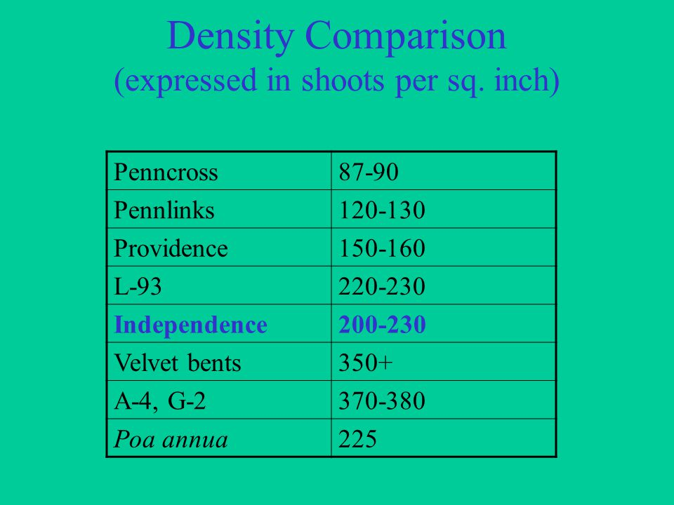 Density Comparison (expressed in shoots per sq.