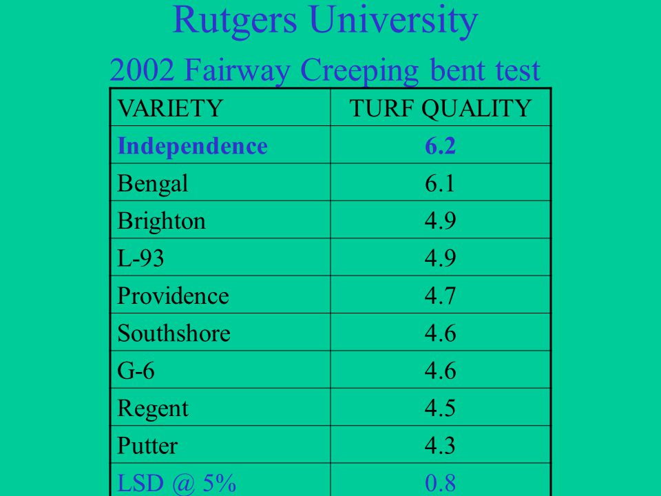 Rutgers University 2002 Fairway Creeping bent test VARIETYTURF QUALITY Independence6.2 Bengal6.1 Brighton4.9 L-934.9 Providence4.7 Southshore4.6 G-64.6 Regent4.5 Putter4.3 LSD @ 5%0.8