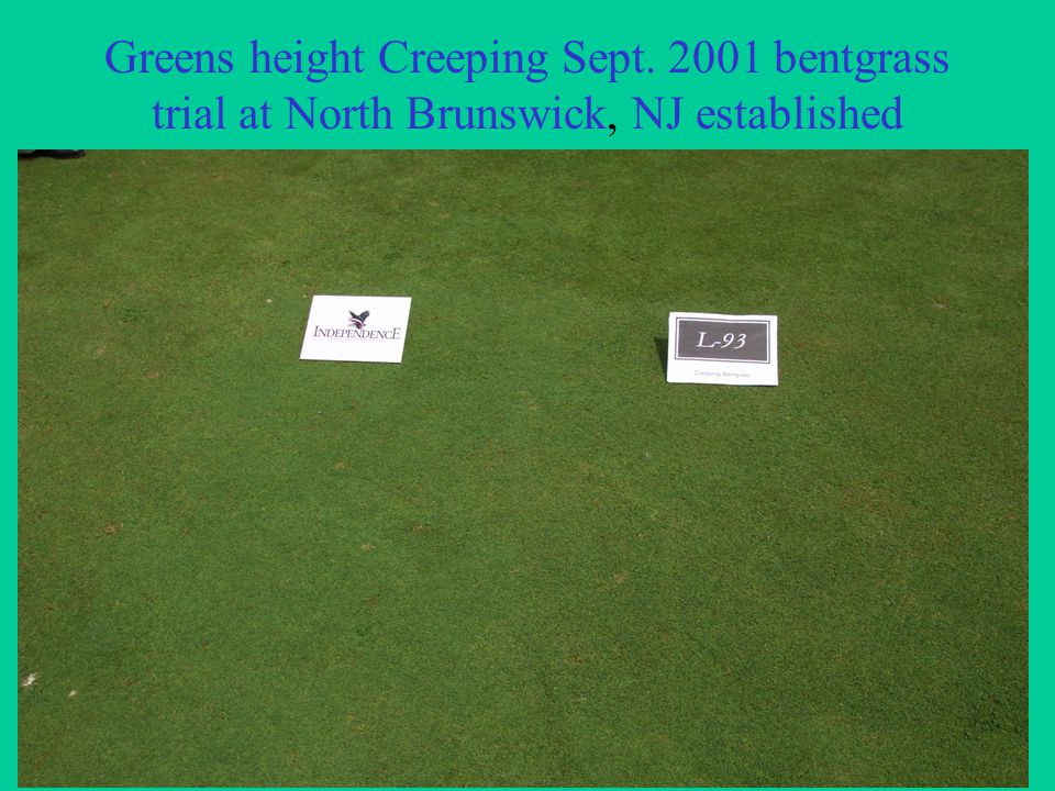 Greens height Creeping Sept. 2001 bentgrass trial at North Brunswick, NJ established