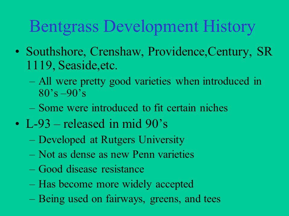 Bentgrass Development History Southshore, Crenshaw, Providence,Century, SR 1119, Seaside,etc.