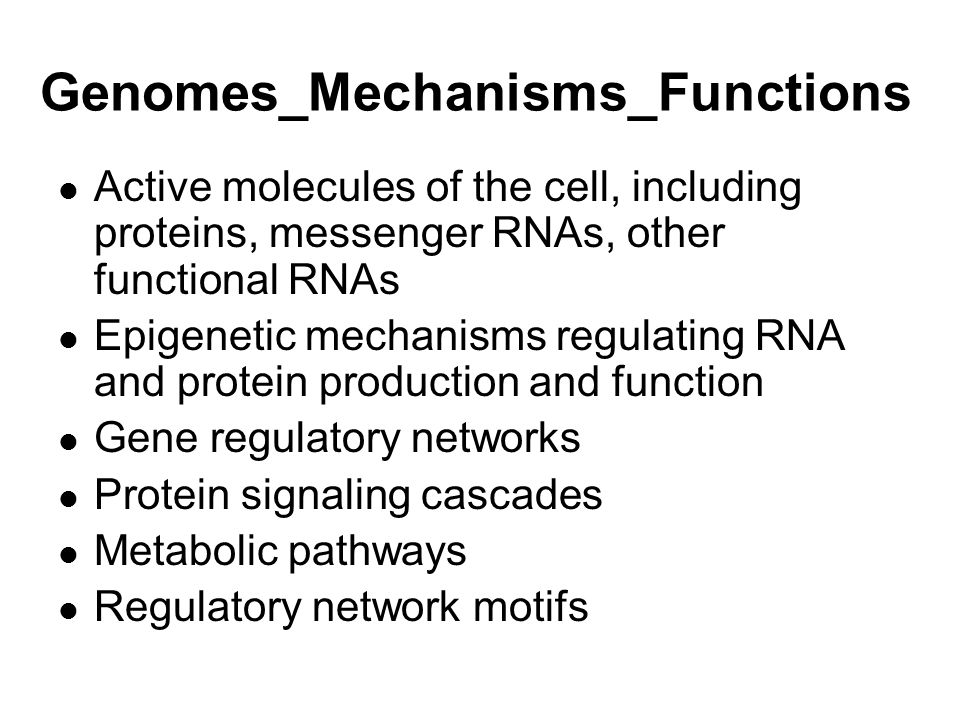 Genomes_Mechanisms_Functions Active molecules of the cell, including proteins, messenger RNAs, other functional RNAs Epigenetic mechanisms regulating RNA and protein production and function Gene regulatory networks Protein signaling cascades Metabolic pathways Regulatory network motifs