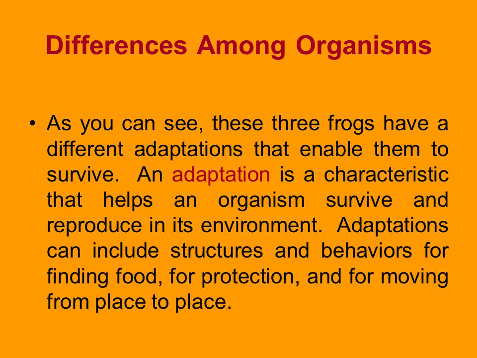 Change Over Time If someone asked you to describe a frog, you might say that a frog has long hind legs, eyes that bulge, and a habit of croaking from