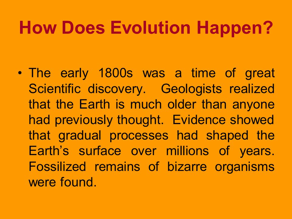QUIZ 1. Use the words adaptations, population, and evolution together in a sentence. 2. List two reasons why gaps exist in the fossil record. 1.Evolut