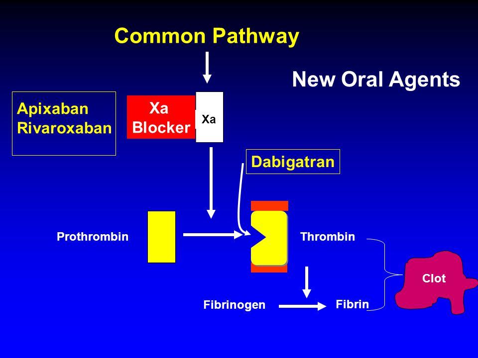 Fibrinogen Fibrin Common Pathway Thrombin Xa Prothrombin Clot Xa Blocker Apixaban Rivaroxaban Dabigatran New Oral Agents