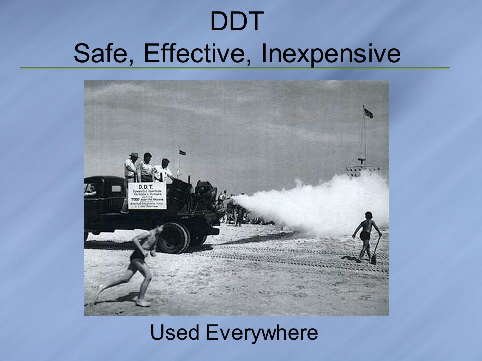 DDT Safe, Effective, Inexpensive Used Everywhere
