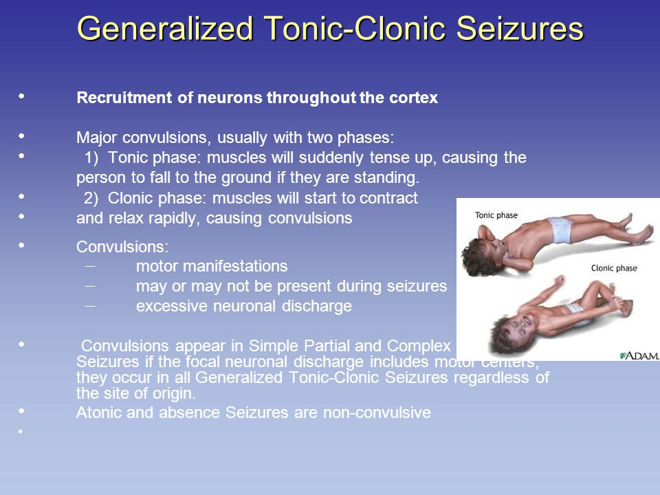 Recruitment of neurons throughout the cortex Major convulsions, usually with two phases: 1) Tonic phase: muscles will suddenly tense up, causing the person to fall to the ground if they are standing.