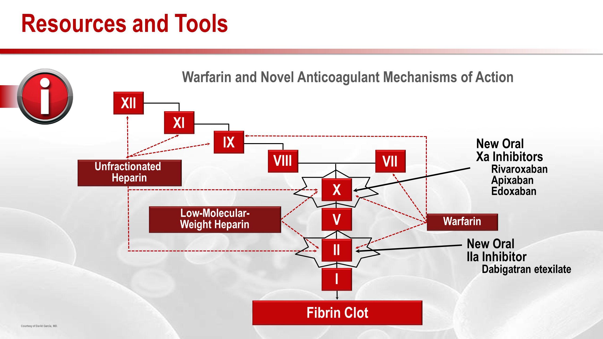Warfarin and Novel Anticoagulant Mechanisms of Action Courtesy of David Garcia, MD.