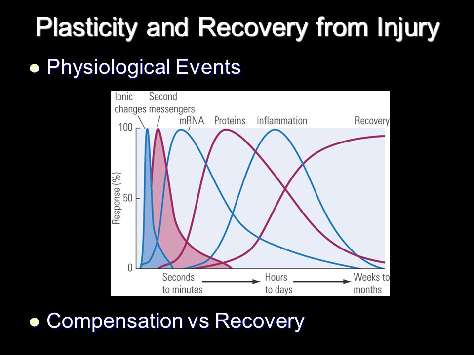 Plasticity and Recovery from Injury Physiological Events Physiological Events Compensation vs Recovery Compensation vs Recovery