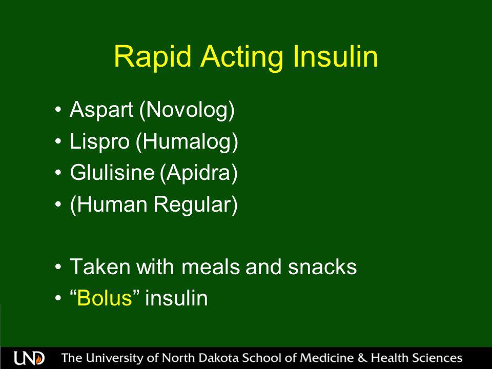 Rapid Acting Insulin Aspart (Novolog) Lispro (Humalog) Glulisine (Apidra) (Human Regular) Taken with meals and snacks Bolus insulin