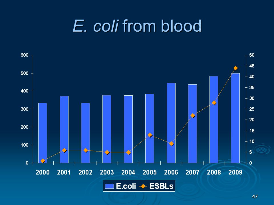 4747 E. coli from blood