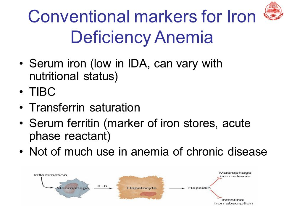 Serum iron (low in IDA, can vary with nutritional status) TIBC Transferrin saturation Serum ferritin (marker of iron stores, acute phase reactant) Not